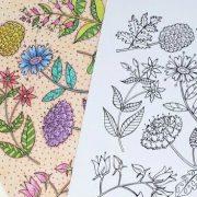 Floral Specimen cropped