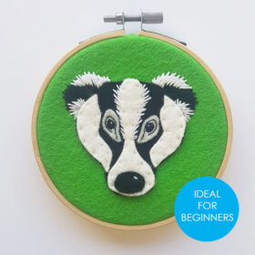 Badger Kit - beginners tag website